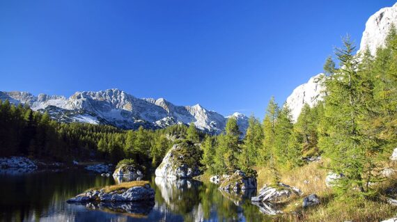 Trigalv lakes valley