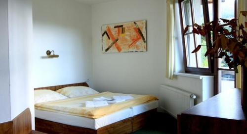 Hotel Pension David3