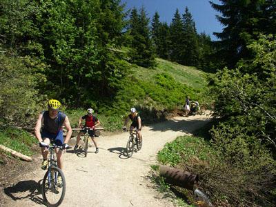Mountain biking Jakuszyce